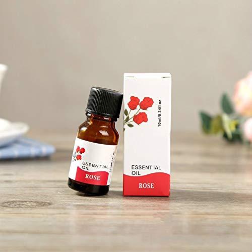 10 ml Wasserlösliches Aromatherapie-ätherisches Öl Aroma-Duftöl Lufterfrischeröl für Massage-Spa-Luftbefeuchter -