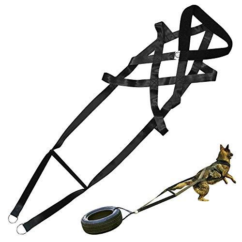 Pet Artist Harnais de Traction de Poids pour Chiens de Travail de Grande Taille avec traîneau pour Traction de Poids, Harnais de Traction pour Chiens et Chiens