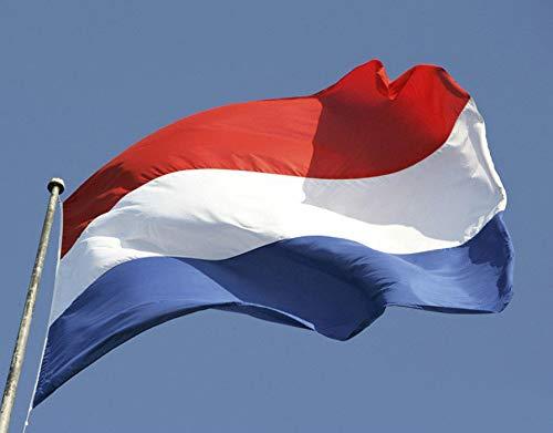 Internationale Flaggen, 20 Stück Nationalflaggen Hand Winken Land Banner Flagge Handheld Flaggen für Bar, Partydekorationen, Sportvereine, Feierliche Eröffnung (Niederlande)