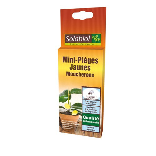 Solabiol Sopiflor Mini-Pièges Moucherons Discret pour Plantes D'Intérieur, Jaune, 8 x 2 x 23 cm