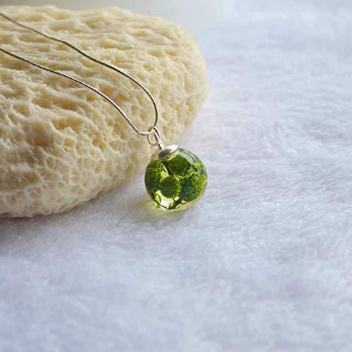 Grünes Berzelia Brunia Echte Blume Glas Kugel 925 Sterling Silber Schlange Ketten Halskette 45cm Länge - Trockene Kugeln