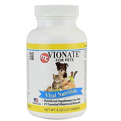 Vionate Vitamin Mineral Powder 1
