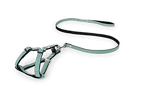Durable Nylon Dog Leash Rope Two-color Lattice Patch Coffre Back Carotte de traction pour animaux de compagnie, Training Leash Slip Lead Traction Rope Walk Pet Coupler Harnais, ajustable Nylon Pet Rope Chain Training Collier Leash Pour Grand / Moyen / Petit Chien (Jaune) ( Color : Green , Size : M )
