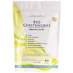 Bio-Gerstengras-Pulver 500g