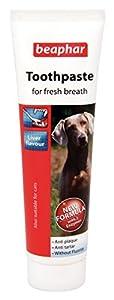 Beaphar Dentifrice anti-plaque dentaire pour chiens et chats de toute taille Saveur foie