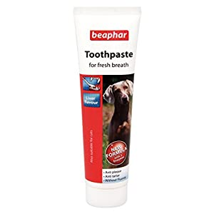 Beaphar Toothpaste for All Sizes of Dogs & Cats, Liver Flavour Anti-Plaque 8