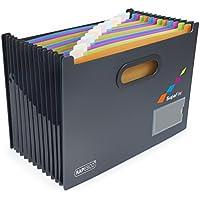 Rapesco 1489 A4 SupaFile Desktop Expanding File Organiser, 13 Parts