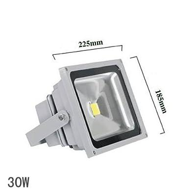 (PMS) 30W SMD LED Scheinwerfer Flutlicht Fluter Strahler Außenstrahler Warmweiss Warmweiß IP65 Wasserdicht