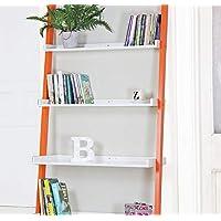 Sue Ryder Leaning Ladder 4 Shelves White Office bookshelf unit display bright