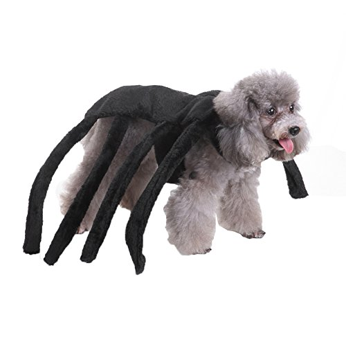 PU Ran Pet Dog Puppy Cute Spider Hundegeschirr Kostüm Halloween Fancy Party Kleidung (Dog Kostüm Spider)