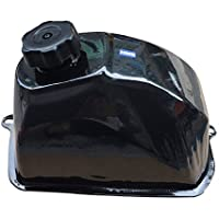 HMParts ATV Quad Bashan Benzin Tank Typ 5