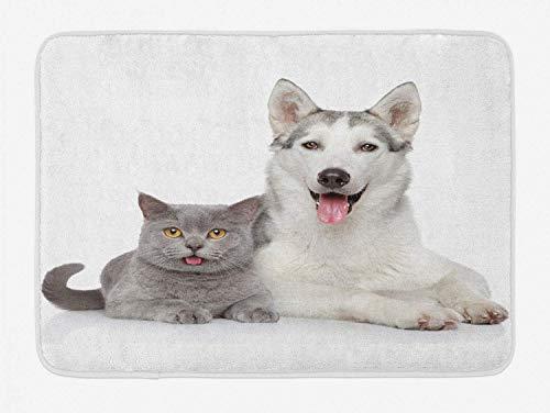 JoneAJ Tapis Bain pour Chat thème Animalier Chien Chat allongé sur Fond Blanc Image numérique avec Coussinet antidérapant pour Salle Bain Coussin décoratif Flanelle résistant Taches 40x60cm