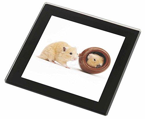 - Rand-spiel (Hamster in Spielen Pot Glasuntersetzer mit schwarzem Rand Weihnachtsgeschenk)