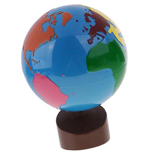 FLAMEER Mapa de Mundo Geografía Juguetes Educativos Globos Terráqueos Giratorios para Niños