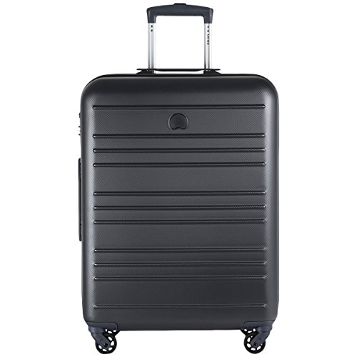 Delsey Carlit L Spinner-Trolley silver_silver