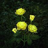 Nouveau modèle extérieur décoratif Rose Solaire LED lumière, pour Jardin, Cour,...