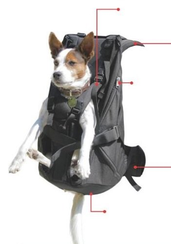 Produkt: Dog carrier