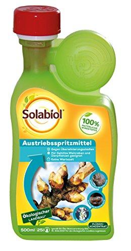 Bayer austrieb fruitiers – 500 ml