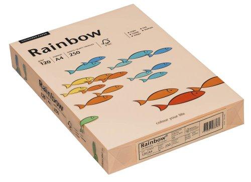 Preisvergleich Produktbild Schneidersöhne Papier Rainbow A4 120g lachs 250Bl