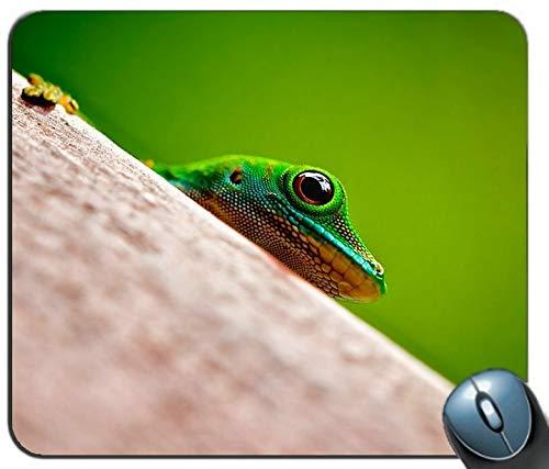 der Frosch Jooee Individuelle Android - Aktien rechteckigen Mousepad, Druck - Skid - Komfort Maßgeschneiderte Computer - Maus - Pads Mousepad - Mousepad