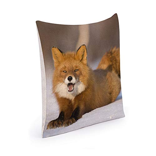 YANAN Fox Snow Tail Pelz Überraschung Baumwolle und Leinen Dekokissenbezug Dekokissenbezug45cm x 45cm - Snow Fox Tail