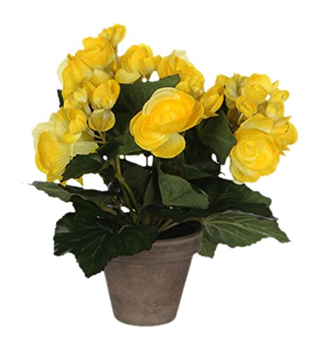 MICA Decorations 977007 Blumen, Begonia, gelb