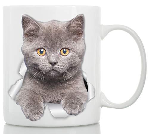 Kaffeebecher mit britischer Kurzhaar-Katze - graues Kätzchen - perfekte britische Kurzhaar-Katze Geschenk - lustige britische Kurzhaar-Katze, Kaffeetasse für Katzenliebhaber 11oz weiß -