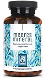 Sango Meereskoralle Kapseln hochdosiert - 120 Sango Koralle Kapseln mit natürlichem 2:1 Kalzium und Magnesium - Sango Coral ohne Zusätze aus deutscher Herstellung - Calcium