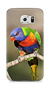 Amez designer printed 3d premium high quality back case cover for Samsung Galaxy S6 (Most Beautiful bird)