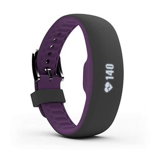 IFit Axis Sensori di Frequenza Cardiaca, unisex, Axis, Black/Plum, (Fitness Trainer Heart Rate Monitor)