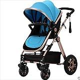 QZX Kinderwagen 2-in-1-Kinderwagen-Reise-System Faltbarer Kinderwagen mit umkehrbarem Stubenwagen Umkehr- oder nach vorne gerichtetem Regenschutz-Moskitonetz,Blue