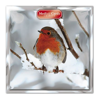 medici-charity-christmas-cards-med6864-pack-of-8-cards-robin-in-aid-of-the-following-charities-marie