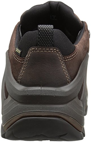 Ecco Terra Evo, Chaussures Multisport Outdoor Homme Marron (Coffee/mocha)