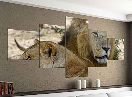 Acrylglasbilder 5 Teilig 200x100cm Löwen Afrika Raubkatze Löwe Druck Acrylbild Acryl Acrylglas Bilder Bild 14F945