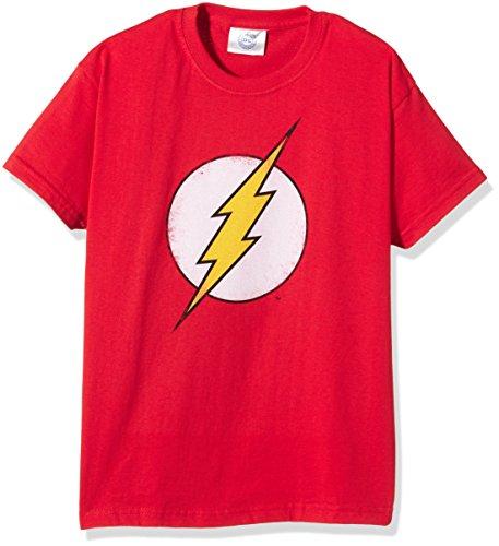 DC Comics Boy's Distressed Flash Logo Short Sleeve T-Shirt