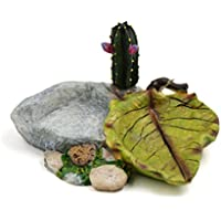 sourcingmap Resina Comedero Placa Plato Bebedero Alimentos W Cereus Planta Decoración De Pequeños Reptiles