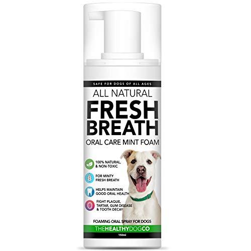 100% Natürlicher Atemfrischer Schaum und Wasserzusatz für Hunde   Schäumende Mundhygiene   Wirksame gegen Mundgeruch und Ablagerungen   Einfacher als Hundezahnpasta   Praktisch im Pumpenformat