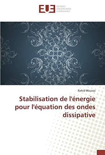 Stabilisation de l'energie pour l'equation des ondes dissipative par Rafed Moussa
