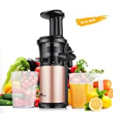 Best Masticating Juicers - Slowe Juicer Masticating Juicer Machine Amzdeal Juicer 200W Review