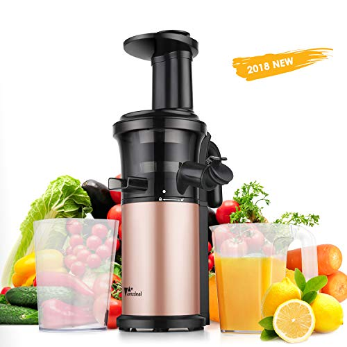 Juicer Amzdeal Slow Juicer Masticating Juicer Machine Cold Press Juicer BPA Free for High Nutrient Fruits and Vegetables Juice Easy to Clean 200w Quiet Motor