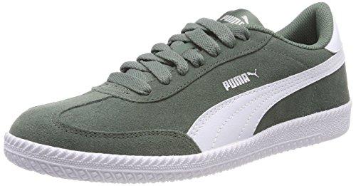 Puma Unisex-Erwachsene Astro Cup Sneaker, Grau (Laurel Wreath White), 42 EU - Laurel Leder