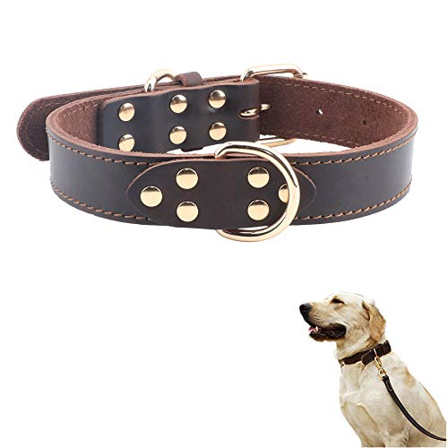 Hundehalsband, Leder, Braun/Schwarz, für mittelgroße und große Hunde, mittelgroß, L: 19''-26'', braun - Pilz Braun Leder