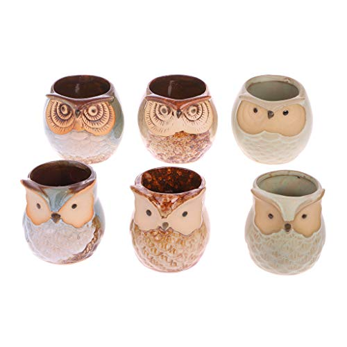 CADANIA 6 Stück Niedliche Eule Mini Keramik Blumentopf Sukkulente Blumentopf Home Office DIY Garten...