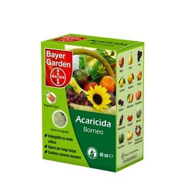 comprare on line Bayer Borneo insetticida acaricida contro il ragnetto rosso 40 ml prezzo