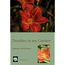 Daylilies in my Garden (ArtistGarden.net Book 1) (English Edition)