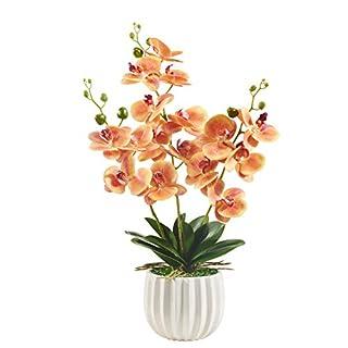 Alicemall Kunstpflanze Orchidee Künstliche Blumen Deko mit Übertopf aus Keramik 68x20x20 cm Gelb