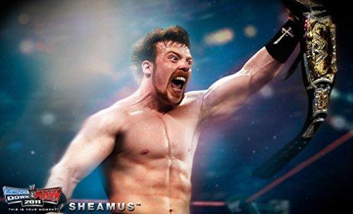 WWE (40x24 inch, 99x60 cm) Silk Poster Seta Manifesto PJ11-95B4