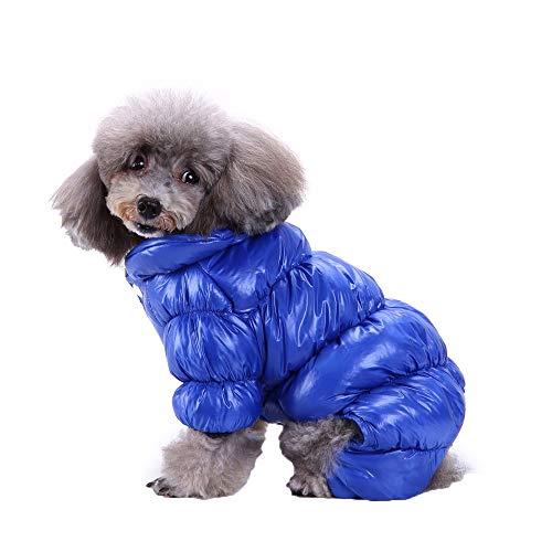 Amphia - Hunde Weste,Haustier Hund Herbst und Winter Kleidung vierbeinige Kleidung - Hund Kleidung Mantel für Kleine Hunde Winter Puppy Jacket warme Kleidung(Blau,XL)