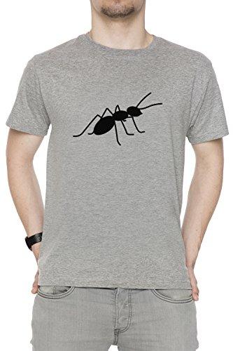 Fourmi Gris Coton Homme T-shirt Col Ras Du Cou Manches Courtes Grey Men's T-shirt