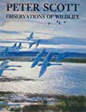Observations of Wild Life